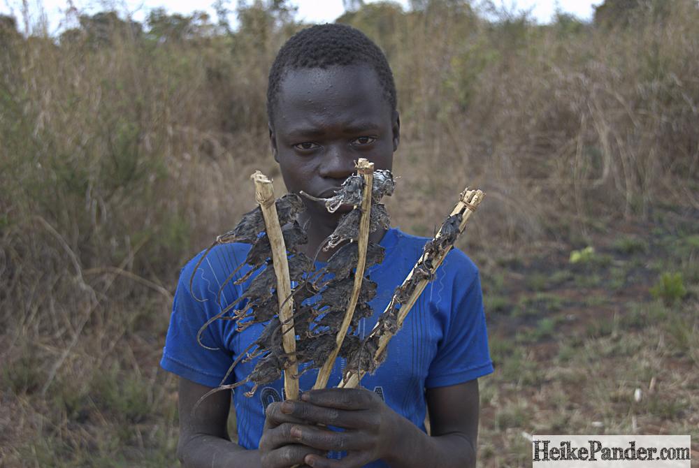"""""""Mäusesnack"""", Malawi"""