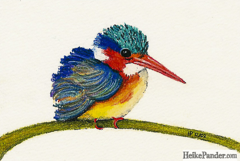 Kingfisher, Pastellkreiden, Heike Pander