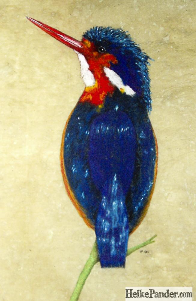 Kingfisher, Pastellkreide, Heike Pander