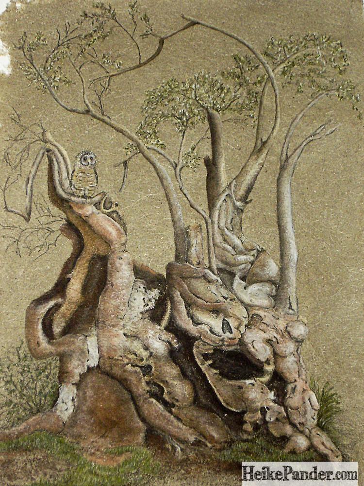 Ölbaum, Pastellkreiden, Heike Pander