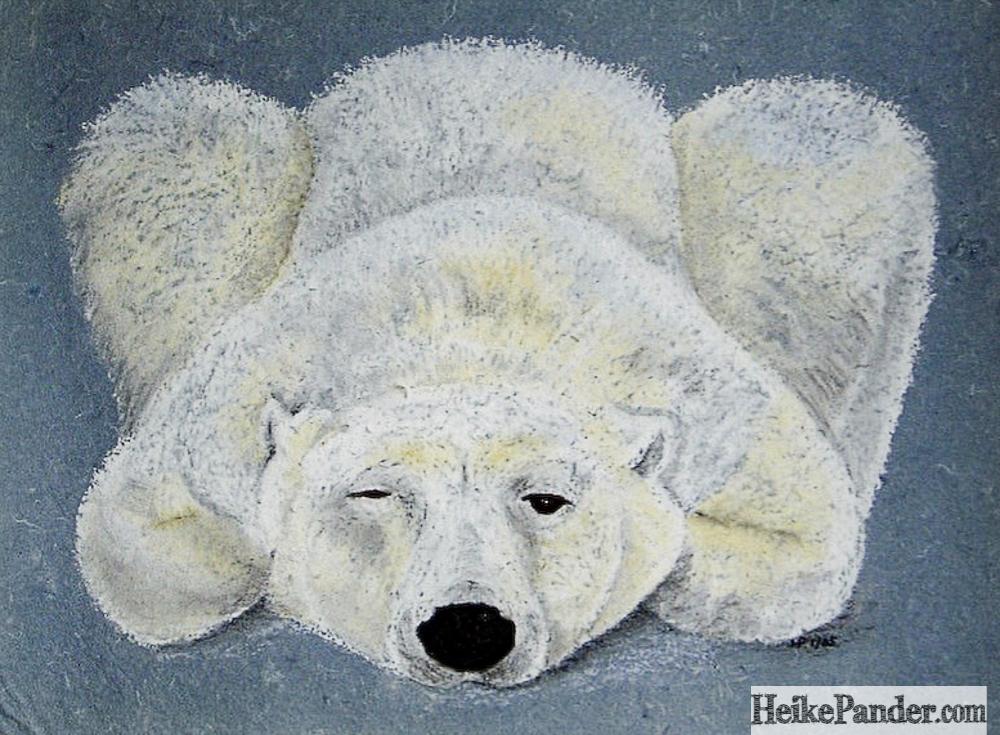 Eisbär, Pastellkreide, Heike Pander