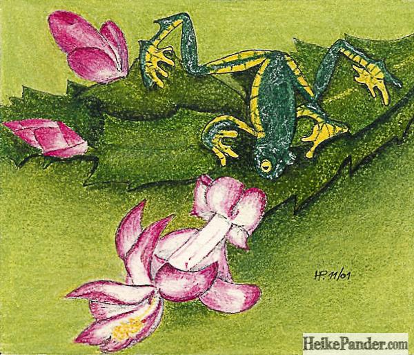 Frosch, Pastellkreiden, Heike Pander