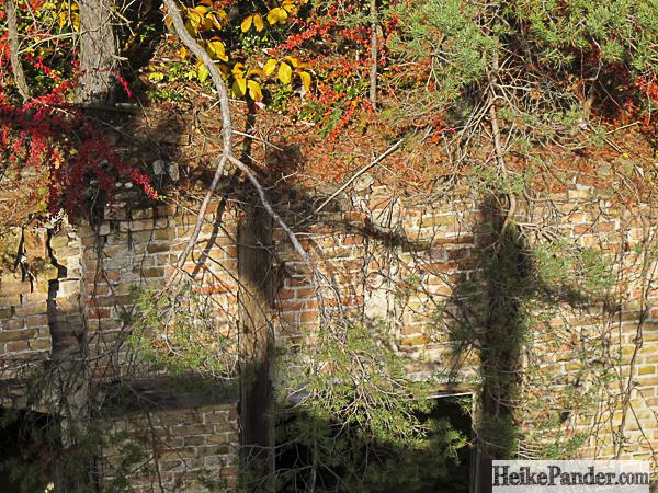 Schatten auf Ruine, Baumkronenpfad Beelitz
