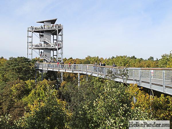 Blick auf Turm, Baumkronenpfad Beelitz