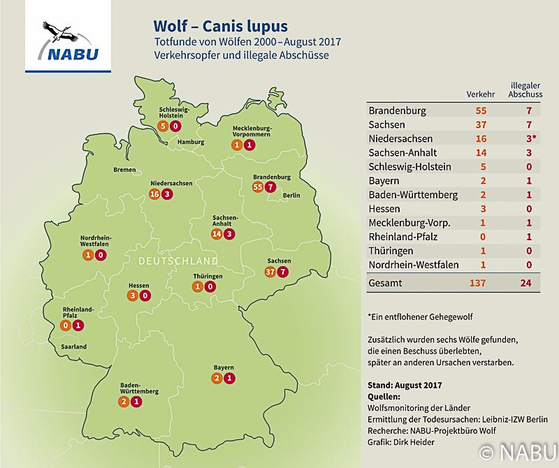 Todfunde von Wölfen, 2000 - 2017, Verkehrsopfer und illegale Tötungen