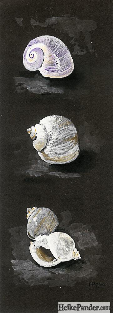 Schnecken, Guache, Heike Pander