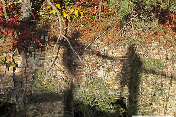Baumkronenpfad, Beelitz
