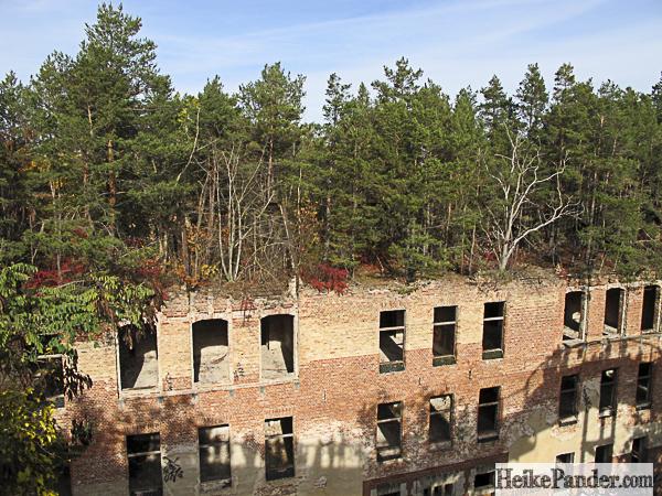 Ruine mit Wald, Baumkronenpfad Beelitz