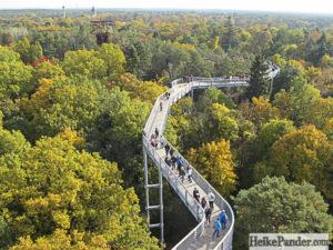 Canopy Walkway Beelitz