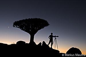 Markus Mauthe, Drachenblutbaum, Jemen