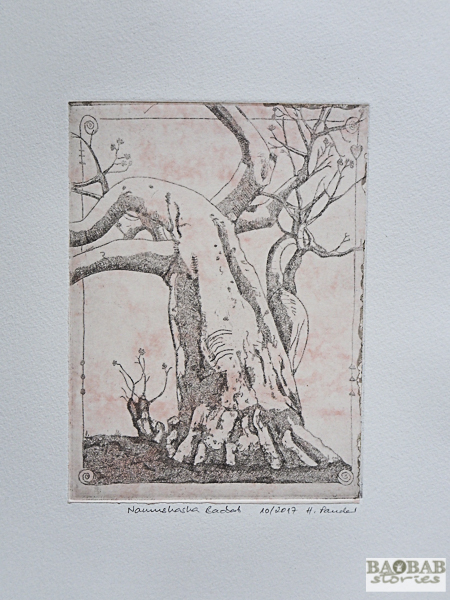 Baobab Namushasha