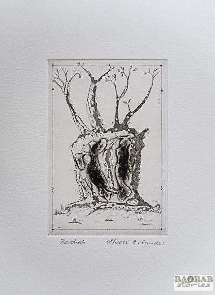 Baobab Hoehlen