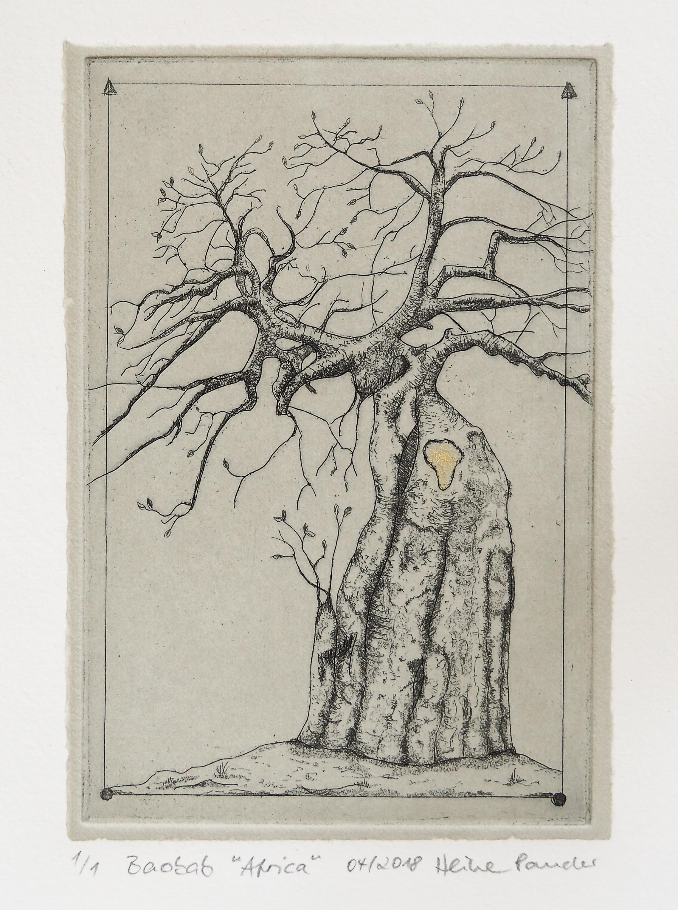 """Baobab """"Afrika"""", Aquatinta, Radierung, Heike Pander"""