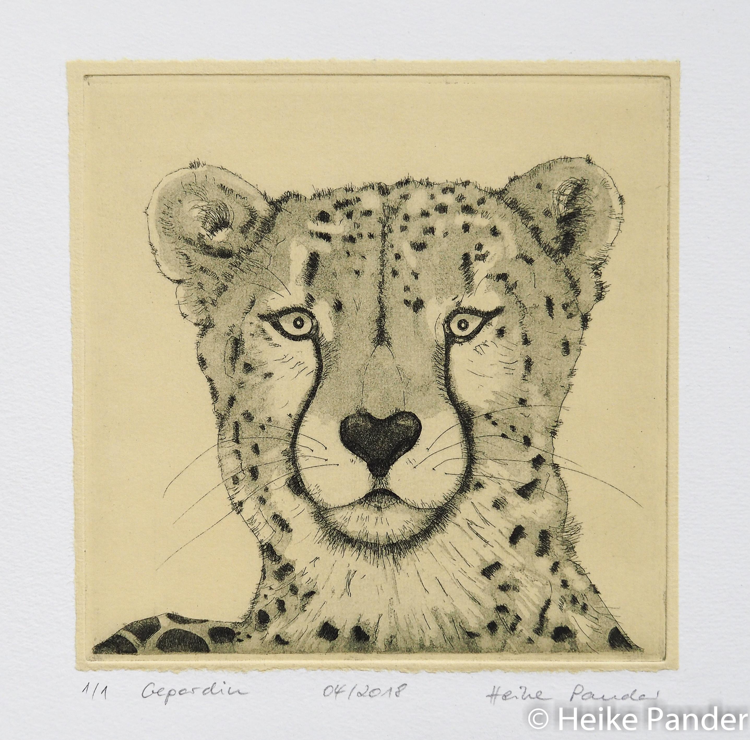 Gepardin, Radierung, Heike Pander