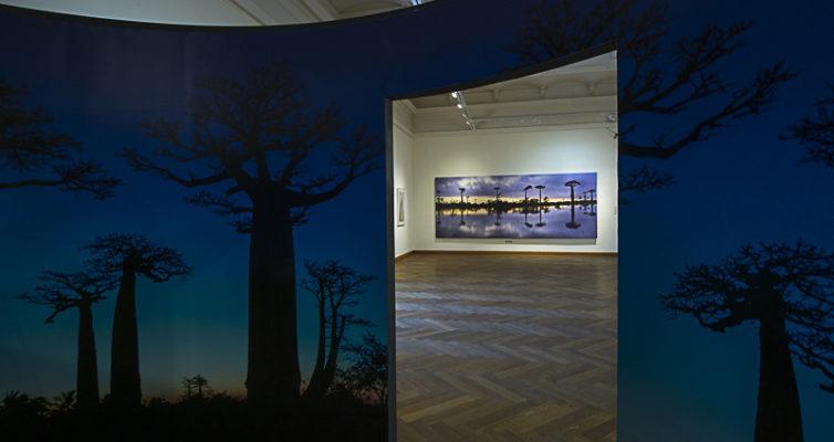 Baobab Fotografie Ausstellung NHM Wien