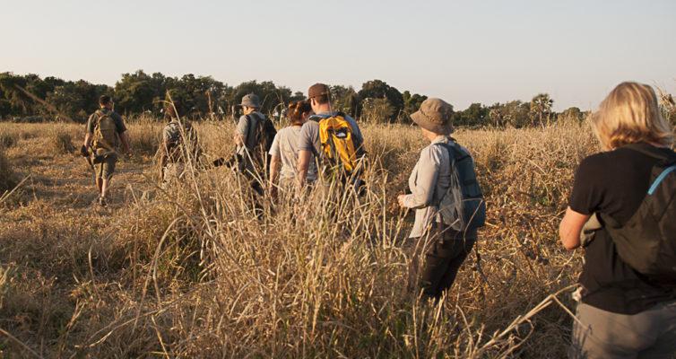Wanderung in der Wildnis, Makuleke, Südafrika