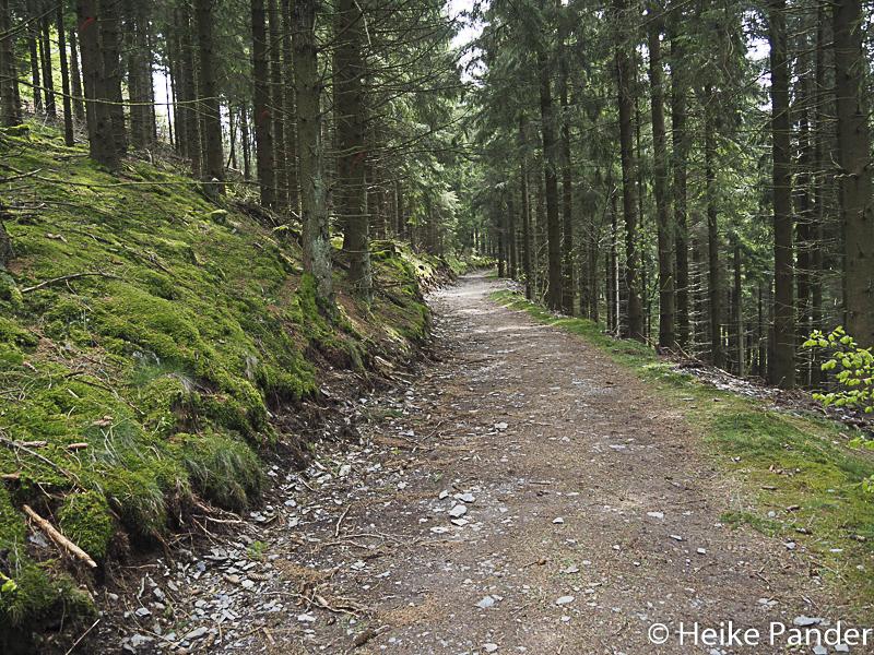 Wanderweg, Nationalpark Eifel
