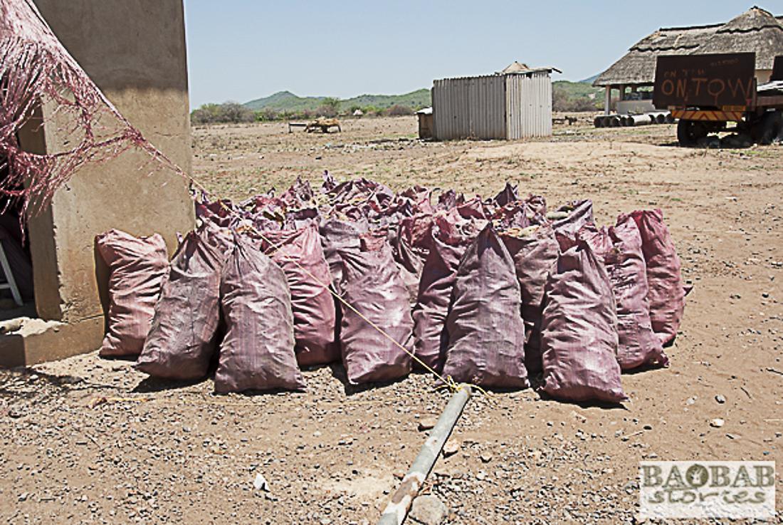 Säcke mit Baobabfrüchten vor der Verarbeitung, Heike Pander