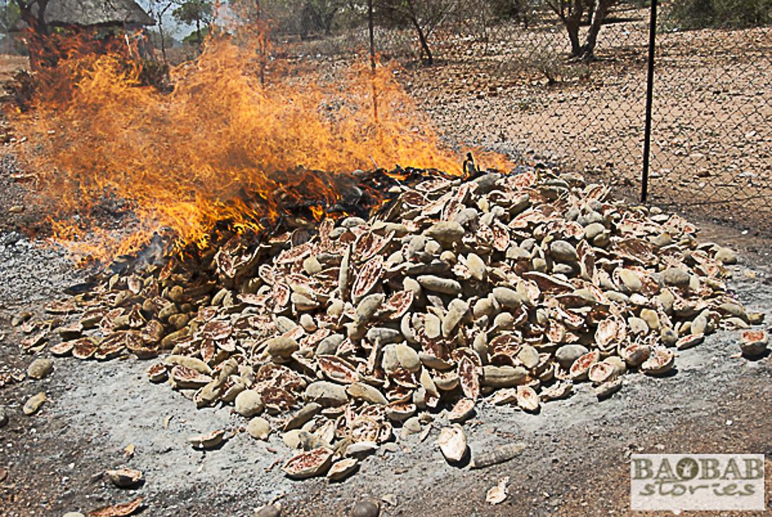 Baobab Fruchtschalen werden verbrannt, Heike Pander