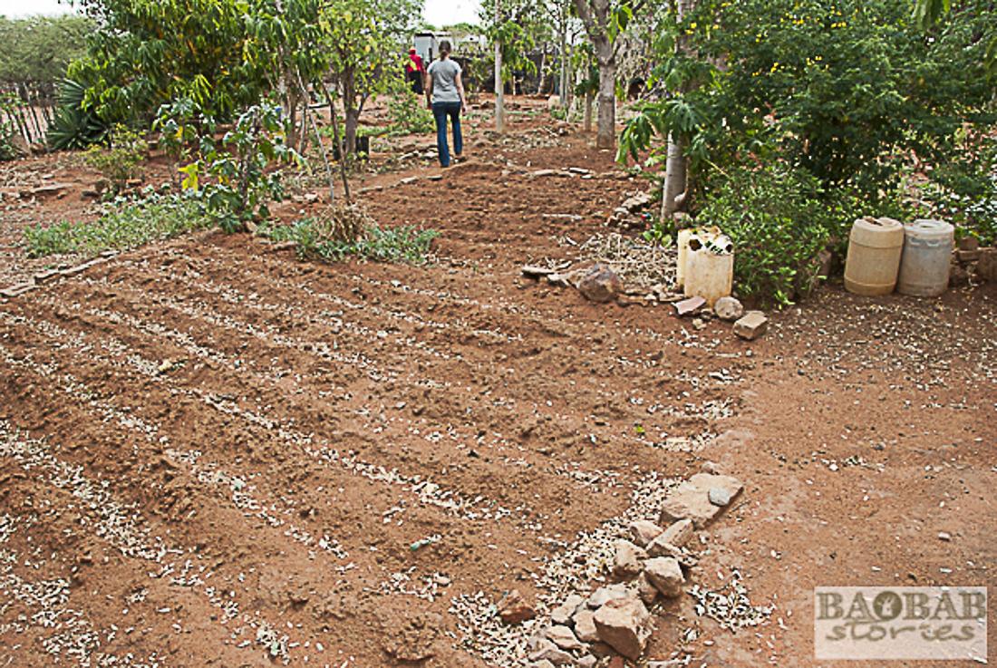 Hausgarten, Limpopo, Südafrika, Heike Pander