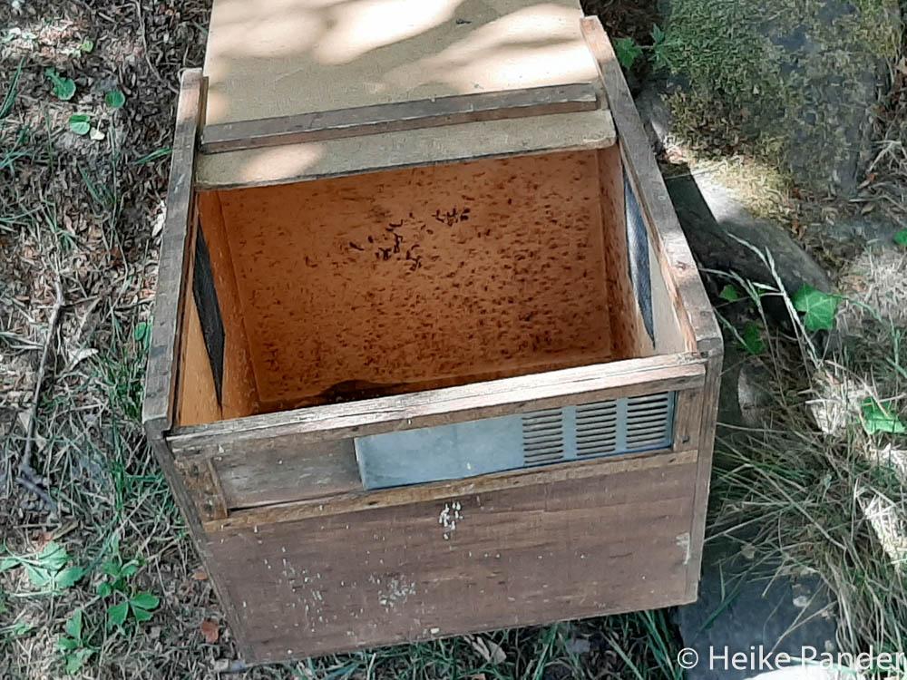 Transportkasten für Bienenvölker, ©Heike Pander