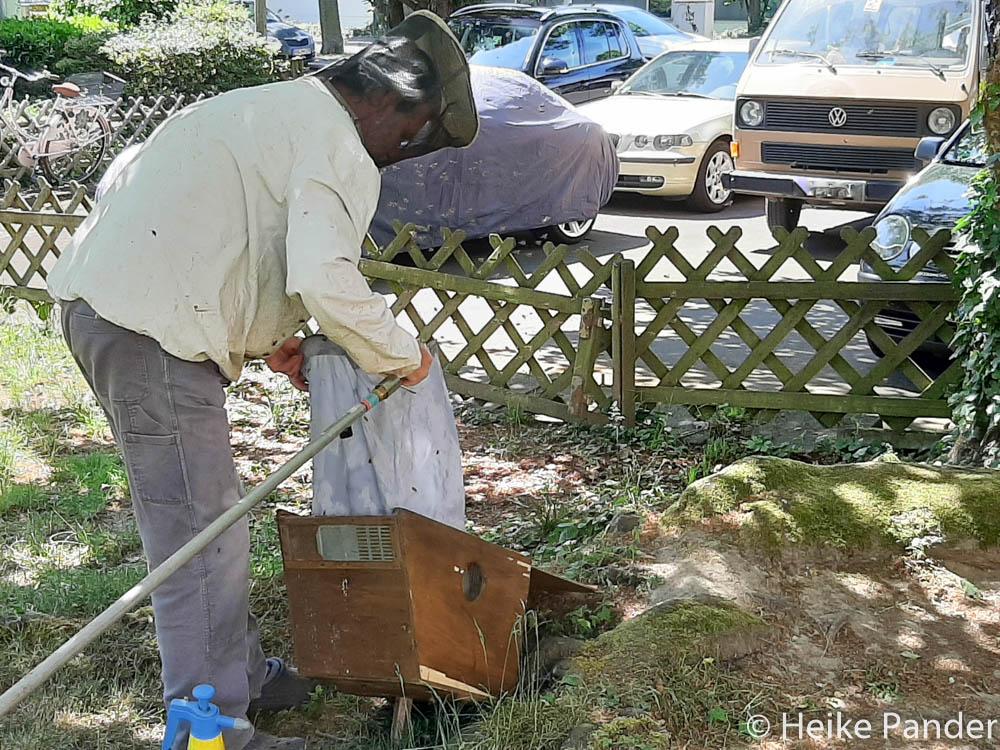 Verladen eines Bienenvolks in eine Transportkiste, ©Heike Pander